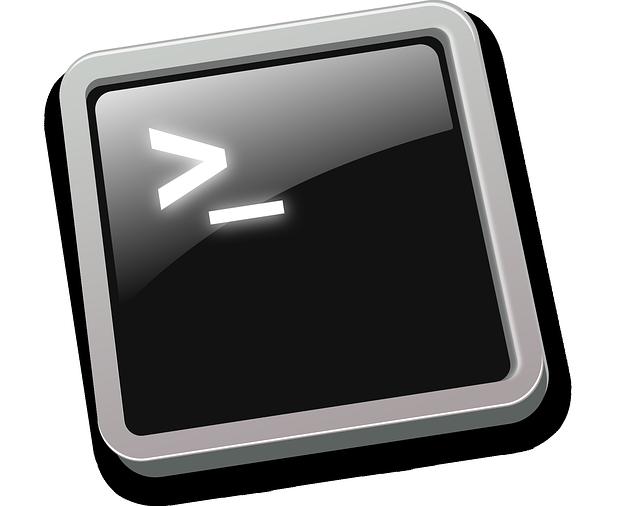 Icône d'un shell linux